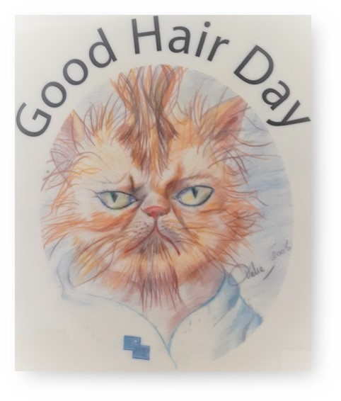 19 tips voor een Good Hair Day